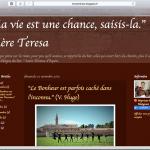 Mission Congo - Le Blog